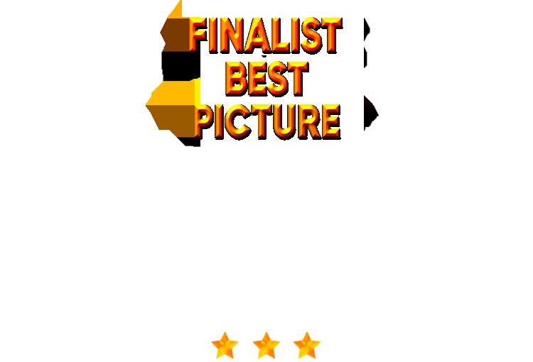 Dark Story - Best Picture